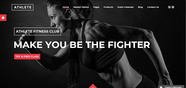 10-best-wordpress-themes-for-fitness-blogs