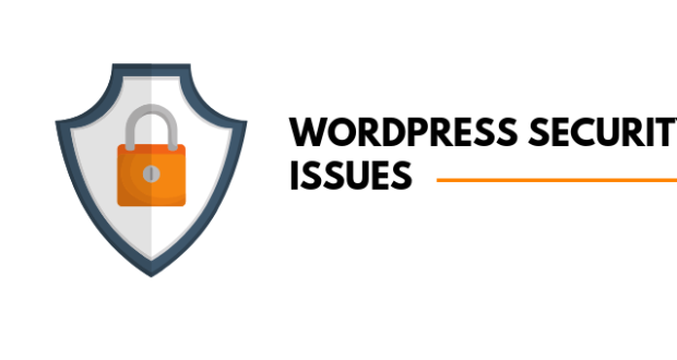 WordPress Security Issues