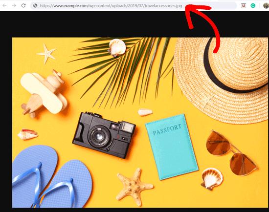 Get the URL of Images in WordPress