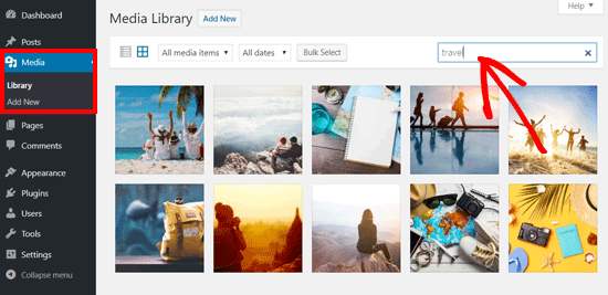 Search Image in WordPress Media Library