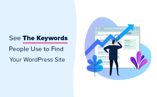 how-to-see-the-keywords-people-use-to-find-your-wordpress-site